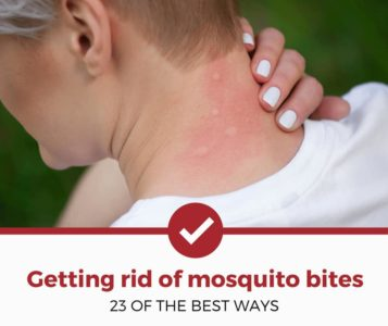 Illustration of Overcoming The Face Avoid Mosquito Bites?