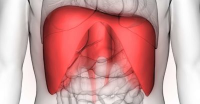 Illustration of The Cause Of Frequent Throbbing Of The Upper Abdomen?