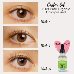 Illustration of The Eye Is Often Confused With Eyelash Serum Oil?