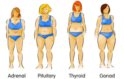 Illustration of Is My Body Healthy?