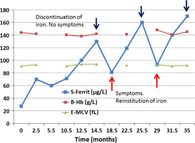 Illustration of Is There Iron Anemia Can Disappear In A Long Time?