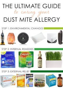 Illustration of What Is The Cure For Dust Allergy?