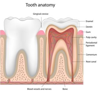 Illustration of Does The Cavity Solution Hurt?