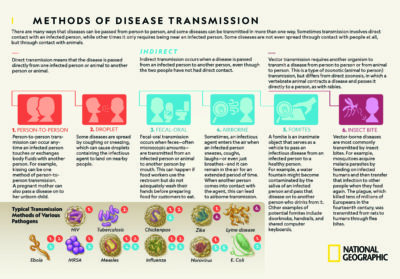 Illustration of What Diseases Might Occur?
