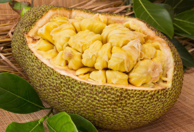 Illustration of Is Eating 6 Jackfruit Seeds Dangerous For The First Trimester Of Pregnancy?