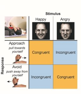 Illustration of How Does Testosterone Affect A Man's Emotional State?
