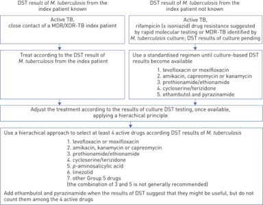 Illustration of Tuberculosis Combination Drug Consumption Rules?