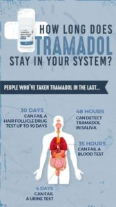 Illustration of How Long Does It Take For Tramadol To Leave The Body?