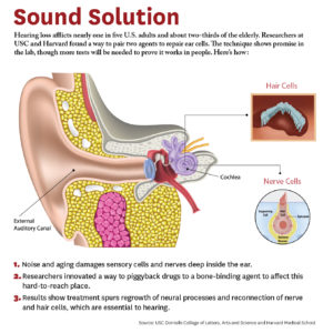 Illustration of How To Cure A Deaf Ear?