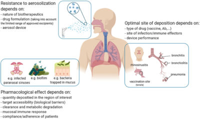 Illustration of Effect Of Inhalation Therapy On The Respiratory Tract?