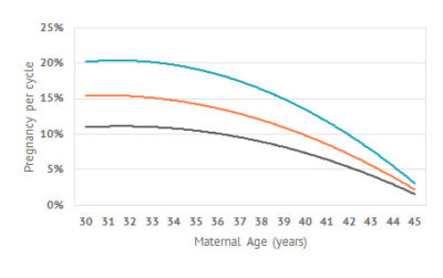Illustration of The Possibility Of Getting Pregnant At The Age Above 45 Years?