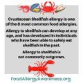 About Seafood Food Allergies?