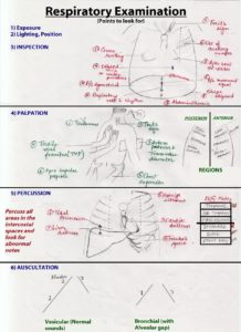 Illustration of Explanation Of Lung Examination Results?