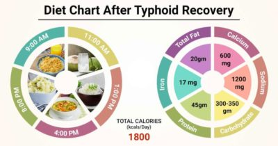 Illustration of Recovery Period After Typhoid Infection?