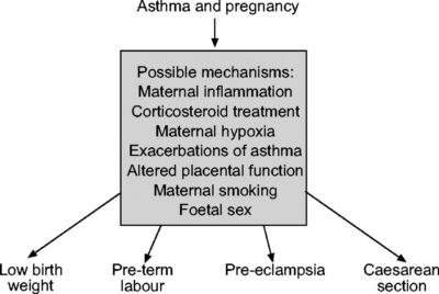 Illustration of Asthma Treatment For Pregnant Women?