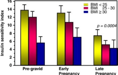 Illustration of Effect Of Fluctuating Body Weight During Pregnancy On Fetal Health?