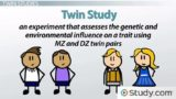Genes That Influence The Birth Of Twins?
