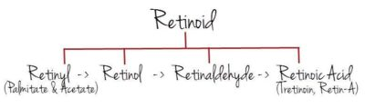 Illustration of Are Retinoids The Same Or Different From Retinoic Acid?