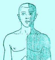 Illustration of The Right Side Of The Body Feels Numb In Mild Stroke Sufferers?