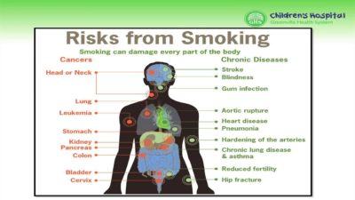 Illustration of The Effects Of Nicotine On The Human Body?
