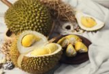 Eat Durian During The Pregnancy Program?