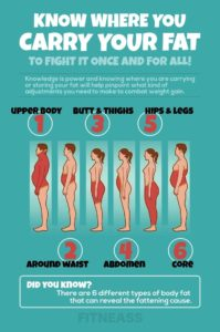 Illustration of The Cause Of The Body To Be Fat?