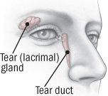 Illustration of Solution For Watery Eyes?