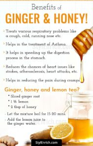 Illustration of The Benefits Of Honey And Ginger?