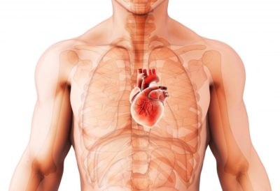 Illustration of Cough And Abdominal Swelling In People With Cardiomegaly?