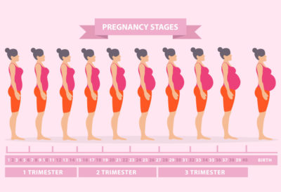 Illustration of Have Not Felt The Physical Changes At 9 Weeks Of Gestation?