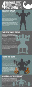 Illustration of What Influence Does Muscle-building Exercise Do For Growth?
