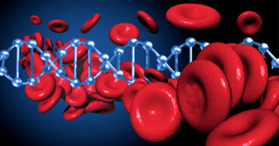 Illustration of Causes And Dangers Of Blood Cancer?