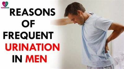 Illustration of Causes Of Frequent Urination In 15-year-olds?