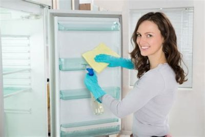 Illustration of Cleaning The Fridge That Has Rats In It?