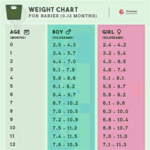 Illustration of Normal Baby Weight At 6 Months?