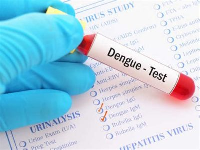 Illustration of Why Does Dengue Fever Continue To Check Blood Until It Heals?