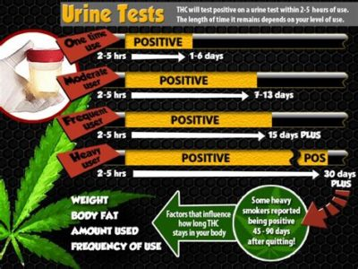 Illustration of Detection Of Marijuana In Urine After 2 Years?