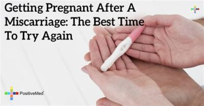 Illustration of The Right Time To Do A Test After A Miscarriage?