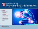 Healing Chronic Irritation Of The Stomach And Hypertension?