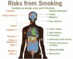 Side Effects Of Smoking On The Health Of The Left Chest?