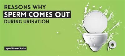 Illustration of Causes Of Sperm Coming Out During Urination?